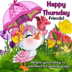 happy thursday friends