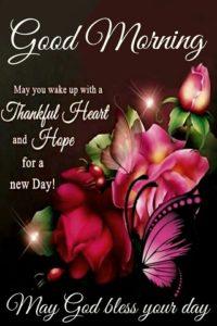 wish you a beautiful thursday