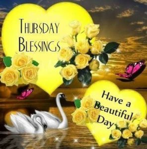 wish you a nice thursday