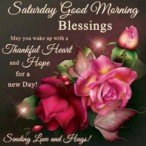 wish you a wonderful saturday