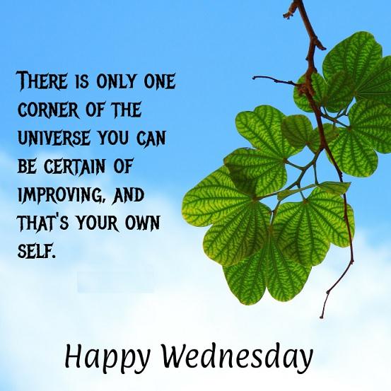 wish you happy wednesday