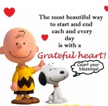 wish you a beautiful day