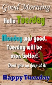 wish you a brilliant tuesday