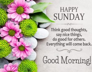 wish you a fantastic sunday