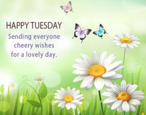 wish you a fantastic tuesday