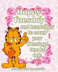 wish you a lovely tuesday