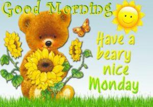 wish you a nice monday