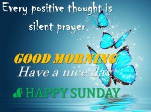 wish you a nice sunday