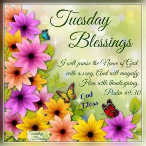 wish you a nice tuesday