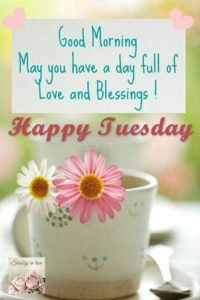 wish you a special tuesday