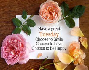 wish you a terrific tuesday