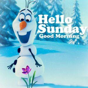 wish you a wonderful sunday